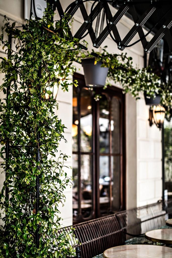 hotel-providence-paris-terrasse-instagram